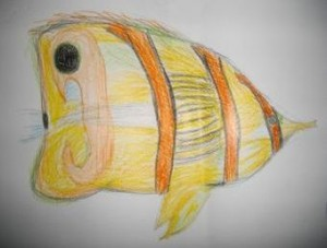 Colour study of fish 1